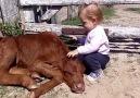 Dünyadaki En Büyük  Sevgi