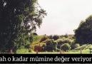 DÜNYA SEVGISI - Mehmet Fatih Hatipoğlu