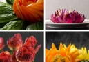 Easy ways to carve fruit and vegetables into something beautiful. bit.ly2uxXjOJ