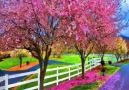 ☆★☆ ♔Amazing Colors of Spring  ♔☆★☆