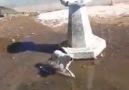 Elazığlılar - Baskil ilçemizde hayvan kurtarma operasyonu