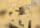 Elifin intikamı alındı - Harran Ajans Press