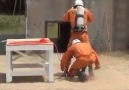 Emergency Rescue Drill..For More Information Videos & Posters Visit