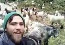 En doğalından Keçilere fısıldayan Adam