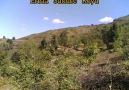 Erbaa Sütlüce Köyü - Gurbetten Sılaya ERBAA