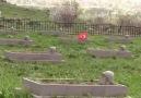 Erzurum Sosyal - Şimdi şu güzel bayram günlerinde...