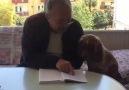 Evde kala kala kafayı yiyen bir vatandaş - Mehmet Yağmur Özer