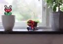 Ev yapımı Süper Mario animasyonu