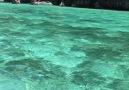 Exploring Amazing Phi Phi Island In Thailand