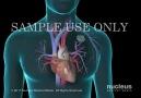facebook.com/Medicalvideos1