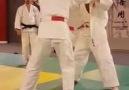 Fantastic Judo