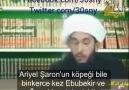 Fatih Kaptan - Şii imam yahudi areal şaronun köpeği ebu...