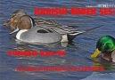 FAWAD Hunter - Birds sound