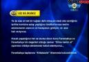 Fenerbahçe'den Beşiktaş'a bomba cevap! 'Siz bilirsiniz'