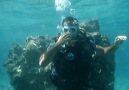first diving :)