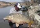 Fish Hunters - Hanımefendinin Çektiği 30 kiloluk dev SAZAN...