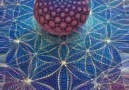 Flower of Life - Holographic Flower of Life Facebook