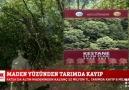 FOX TV FATSA&SİYANÜRLE ALTIN... - Fatsa son dakika haber