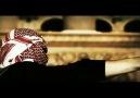 Fuat Ergin - Titre [Uyarlama Video]