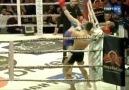 Funny MMA -
