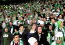 Galatasaray maçı tribün show