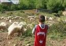 Gardaş - BİZE TÜRK DERLER...(Gül Ahmet)Sayfamızı...