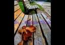 Garip Hüseyin -(By__AYaşLI KRaL)- Ahu Gözlerini Sevdiğim D...