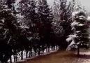 Gazi antep kar altında kaldı