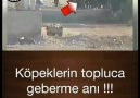 GİZLİ Ferman - Vur ALLAH aşkına vur ...