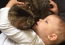 Gli angeli hanno la coda - Quando scegli un gatto come tuo confidente Facebook