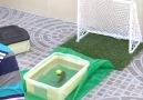Gol atan Hamsi