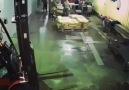 Gostil Beyinli - O 5 saniyelik şaşkınlık