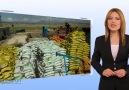 Gün Doğa Madencilik Tarım Ürünleri İnşaat A.Ş.