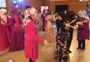 Güzel Bir Düğün - ( TÜRKÜZ TÜRKÜ DİNLERİZ)