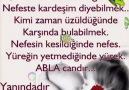 Güz Gülleri - . Facebook