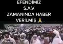 - Hacer Şahin Zengin