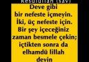 40 HADİS-İ ŞERİF (PAYLAŞALIM İNŞALLAH) (Allahü teâlânın rızası...