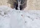 h ağacı - Erzurumun soyuh pınarları