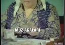 - Halil Ibrahim Karadağ