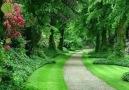 Hayat öyle bir yoldur kiBazen bu yolda... - Mavi Düşler Sokağı