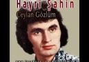 Hayri Şahin - Ceylan Gözlüm - 1975
