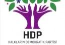 HDP Karadeniz Seçim şarkısı