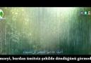 Helali & Hamed Zamani - İmam Rıza (Yeni *Altyazılı*)