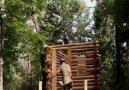 Her Daldan Gülelim - Ormandaki bir adam tarafından inşa edilen ev Facebook