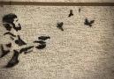 Hiç unutulmasın diye: Ali İsmail Korkmaz belgeseli - Fragman