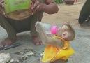 Hindistan cevizi suyu bekleyen bebek... - EMİRDAĞAvrupa Gurbet Sesi