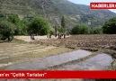 Hizan 'da Pirinç Üretimi