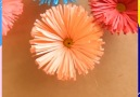 How to make paper flowers By HaunterZoone