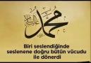 Hz.Muhammed(S.A.V)Alemlere Rahmed - Mustafa Turan El-kadiri