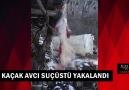 Içeltv Mersin - Kaçak avcı suçüstü yakalandı Facebook